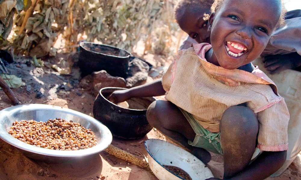 Conselho de Segurança da ONU alerta para risco de fome em quatro países