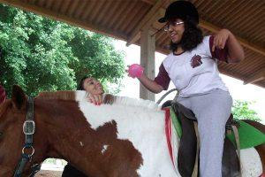 Animais atuam como terapeutas no tratamento de doenças