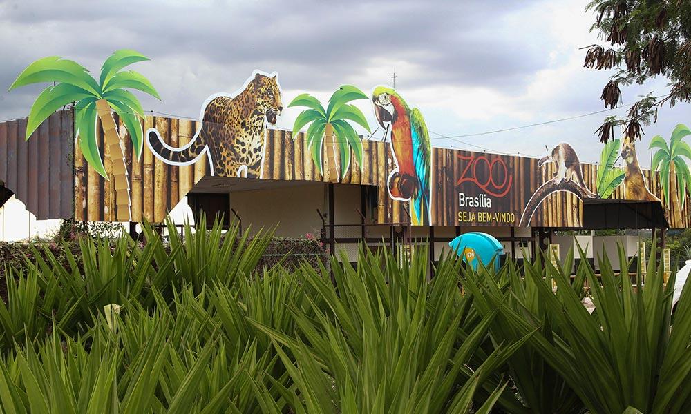 Zoo de Brasília apostou na sustentabilidade e no bem-estar animal em 2017