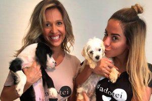 Anitta desiste de comprar cachorro após conhecer Luisa Mell e adota dois animais