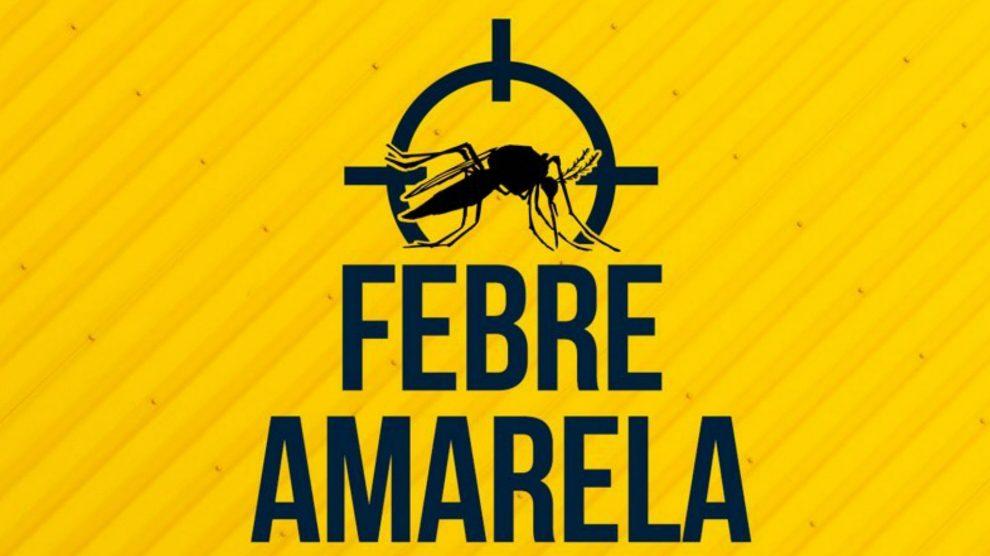 Resultado de imagem para OMS alerta para possibilidade de 3º surto de febre amarela no Brasil